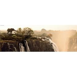 Elefante sulla roccia - PUZZLE PANORAMICO
