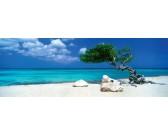 Albero sulla spiaggia - PUZZLE PANORAMICO