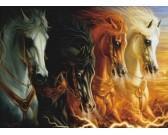 Quattro cavalli
