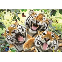 Selfie - tigri