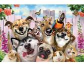 Selfie - cani e gatti
