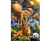 Animali nello spazio
