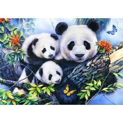 Famiglia di panda