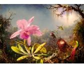 Orchidea e colibrì