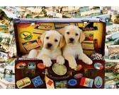 Cuccioli in una valigia