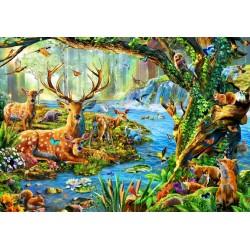 Vita nella foresta