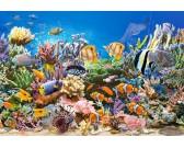 Colori d'oceano - PUZZLE PER BAMBINI