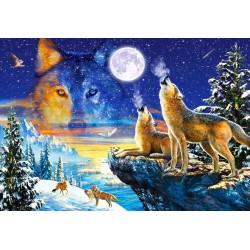 Gruppo di lupi