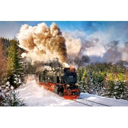 Locomotiva in inverno