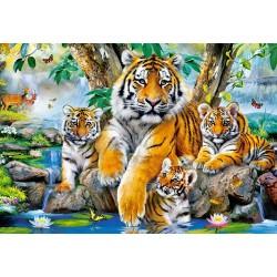 Famiglia di tigri