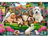 Animali domestici - PUZZLE PER BAMBINI