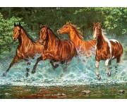 Cavalli nel fiume - PUZZLE PER BAMBINI