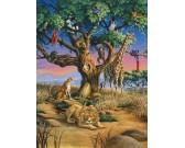 Natura selvaggia in Africa