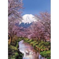 Fuji, Giappone