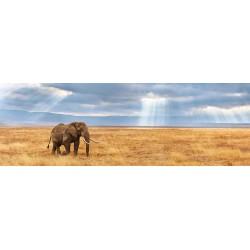 Elefante - PUZZLE PANORAMICO
