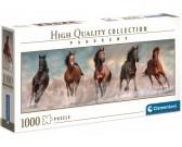Cinque cavalli - PUZZLE PANORAMICO