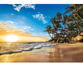 Alba tropicale