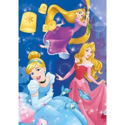Principesse - festa - PUZZLE FLUORESCENTE