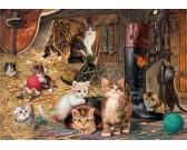 Mondo di gatti