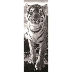 Tigre - PUZZLE PANORAMICO