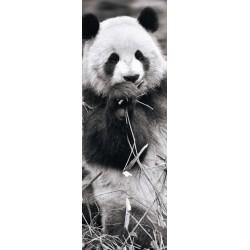 Panda - PUZZLE PANORAMICO