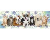 Cani e gatti - PUZZLE PER BAMBINI
