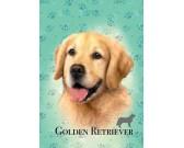 Golden retriever - MINI PUZZLE