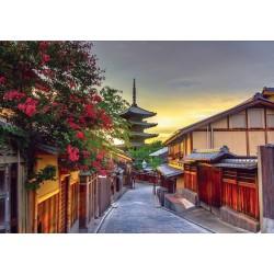 Pagoda, Kyoto