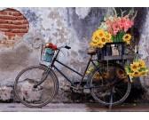 Bicicletta e fiori