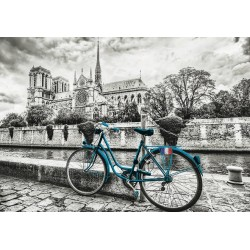 Bici vicino a Notre Dame