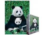 Panda e cucciolo