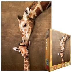 Giraffa con cucciolo