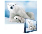 Orso polare con cucciolo