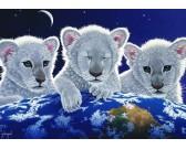 Tre cuccioli di leone