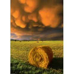 Prima del temporale