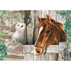 Cavallo e gufo