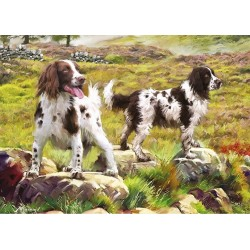 Cani di cacciatore