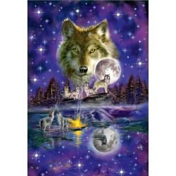 Lupi al chiaro di luna