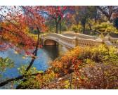 Passeggiata in Central Park
