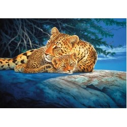 Leopardi