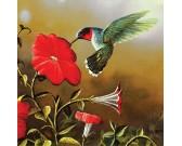 Colibrì con il fiore rosso - XXL