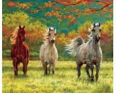 Tre cavalli - XXL PUZZLE