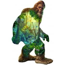 Uomo della foresta